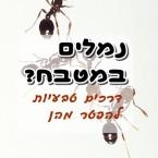 איך להיפטר מנמלים