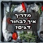 מדריך דגים