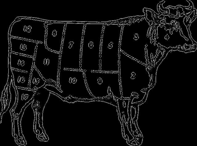 חלקי בשר