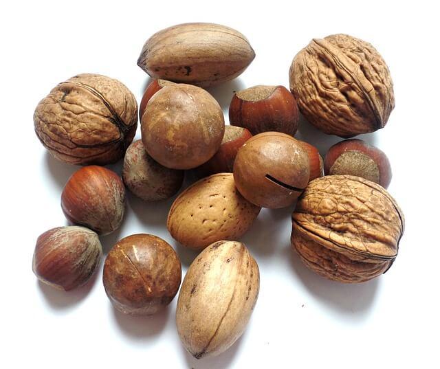 סוגי אגוזים